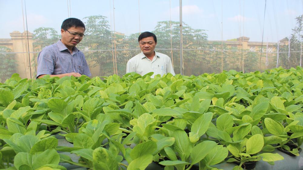 Bắc Giang xếp 60/63 tỉnh, TP về quản lý vệ sinh an toàn thực phẩm